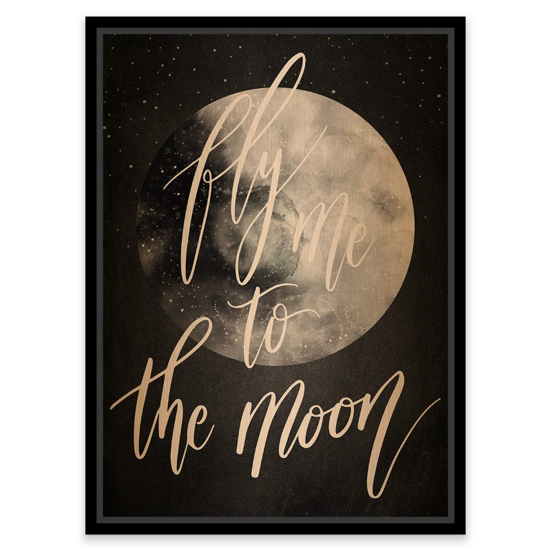 Tablou vintage - Fly me to the moon - Catalog