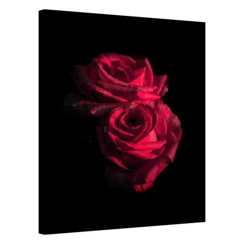 Tablou trandafiri rosii Nostalgie