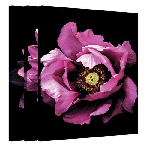 Set tablouri cu flori Ruby Rose