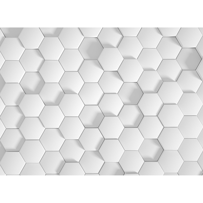 Fototapet efect 3D fagure alb vlies