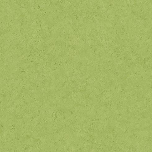 Tapet beton verde vlies