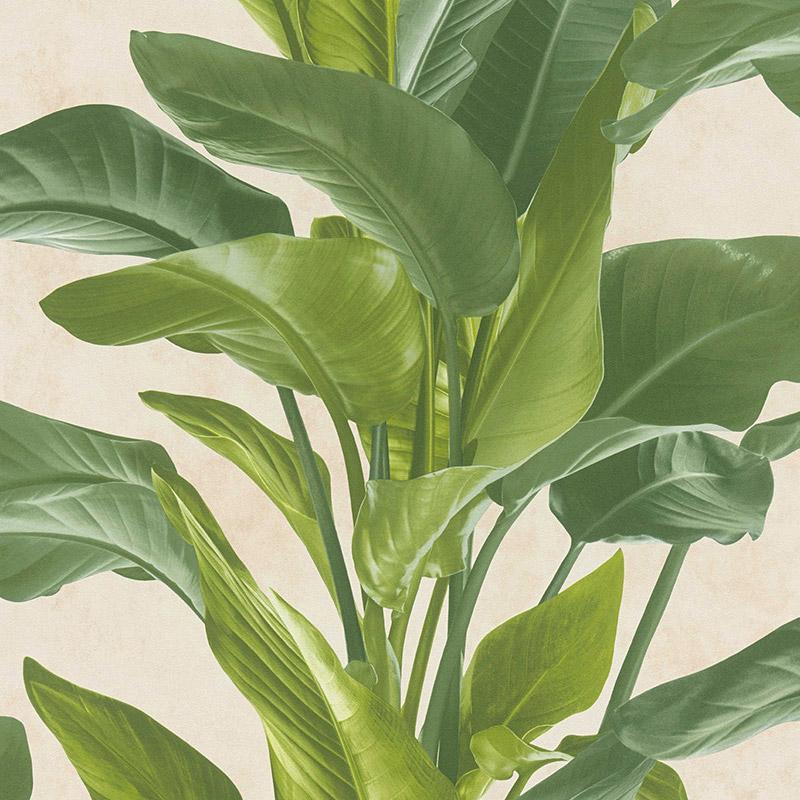 Tapet frunze verzi exotice